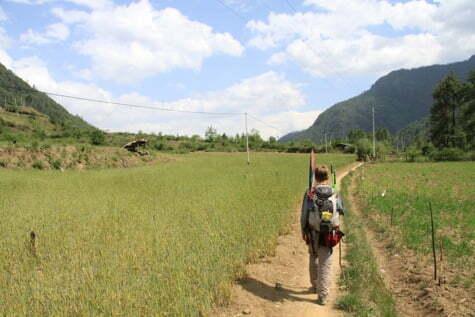 Arrozales en Bhutan