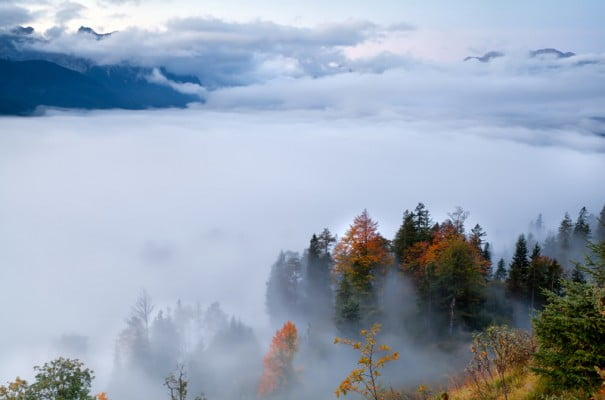paisagem de nevoeiro