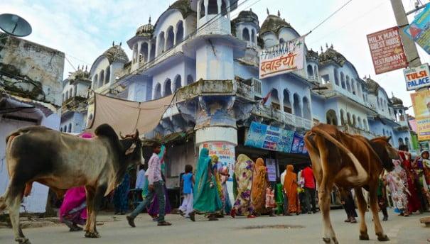 IndiaBoomShankar