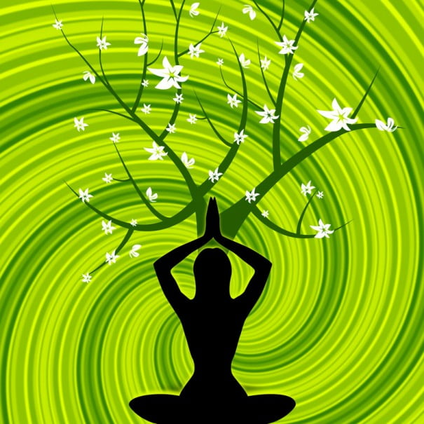 yoga vectorial