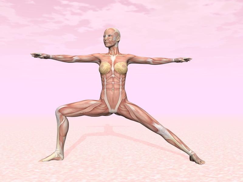 Estudiar yoga terapéutico, una decisión inteligente | Yoga en Red