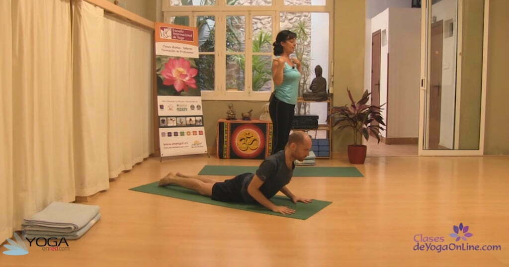 Clase de yoga online 33 serie de rishikesh con variantes yoga en red - Clases de yoga en casa ...