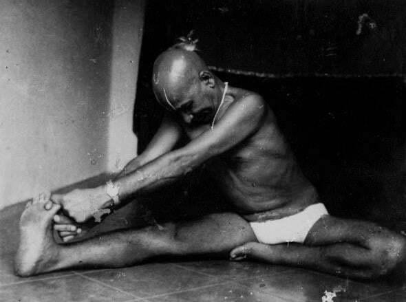 Vinyasa krama yoga ii el estilo perfecto para practicar - Musica para hacer yoga en casa ...